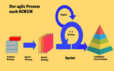 SCRUM Master & SCRUM Product Owner